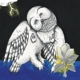 Coverbild Magnolia Electric Co.(10th Ann - Songs:ohia - LP