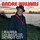 Coverbild I Wanna Go Back To Detroit City - Williams,  Andre - LP + Download